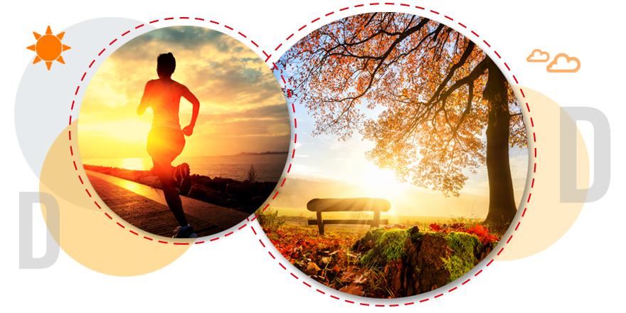 D Vitamini Eksikliği Sonuçları ve D vitamini Hangi Besinlerde Bulunur?