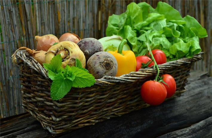 Sebze Sevmeyenlere Öneriler
