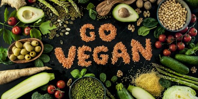 Vegan Beslenme ve Veganizm Nedir   22 Günlük Bitkisel Beslenme