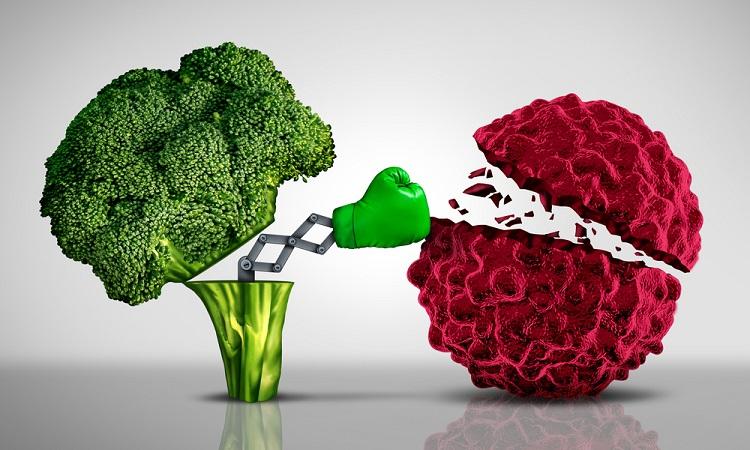 kanser-beslenme Onkoloji Hastaları Yemek Listesi | Kanser Tedavisi Yiyecekleri