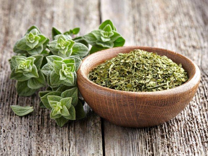 oregano-1 Tiroid Hastaları İçin Beslenme Önerileri