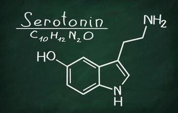 5af5a15566a97c82afddb046 Serotonin Hormonu Nedir ve Hangi Besinlerde Bulunur?